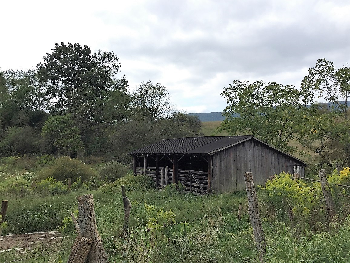92+-ACRES - 225 W CYPHER RD